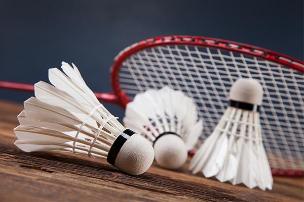 Badminton Tsv Vordorf Von 1920 Ev
